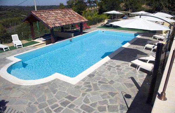 the 11 x 5 metre pool nestled in our vinyards with views to the alps